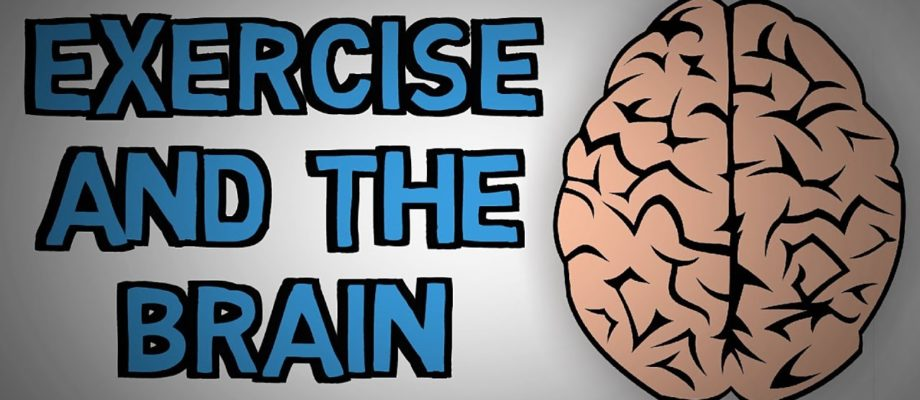 How Exercise Improves Brain Function