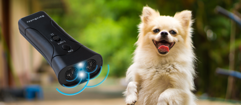 BarxBuddy is Hands Down The Best Dog Training Device